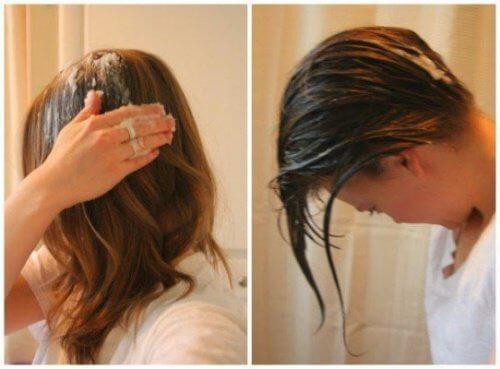 健康な髪をつくる/ココナッツオイル療法TOP5!