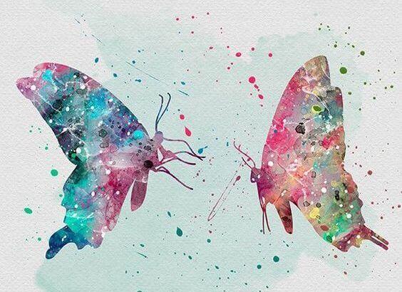 2-butterflies
