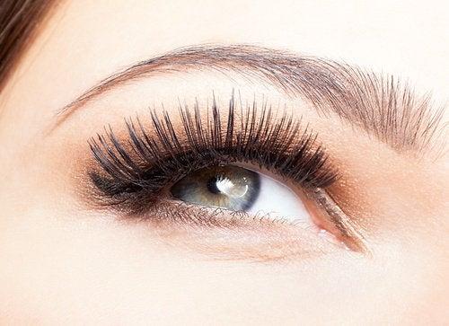 2-eyelashes