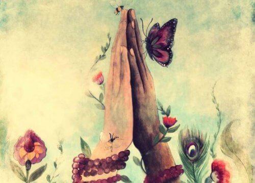 3-butterfly-flowers