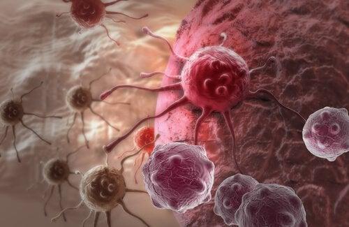 3-tumors