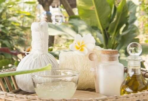 aloe-vera-cream-and-coconut-oil