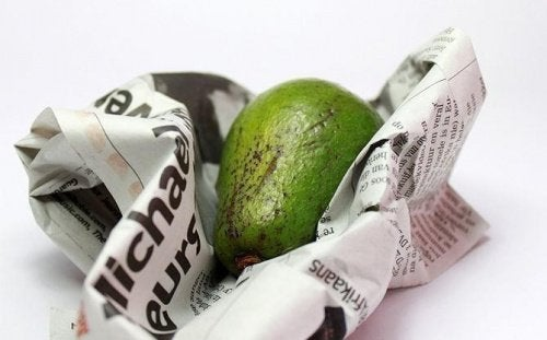 avocado-newspaper