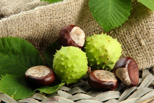 benefits-of-chestnuts