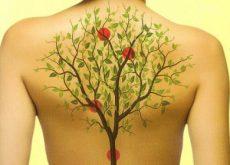 dolor-de-espalda-y-emociones-500x280