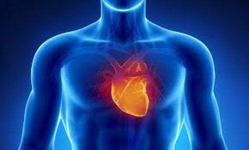 不安発作と心臓