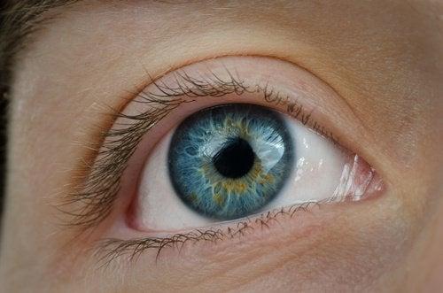 視力低下を防ぐ!