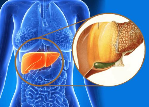 肝臓に毒素が蓄積されていることを示す9つのサイン