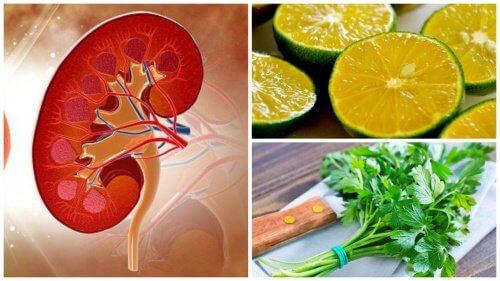 腎臓結石の除去に役立つレモンパセリシロップ