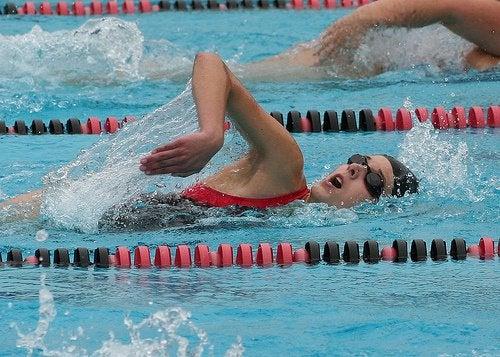 nadar-500x357