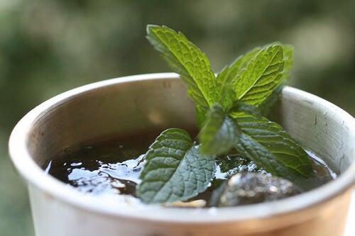 green-tea-9