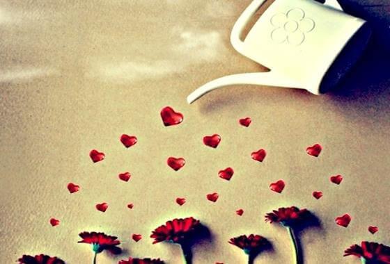 hearts-flowers