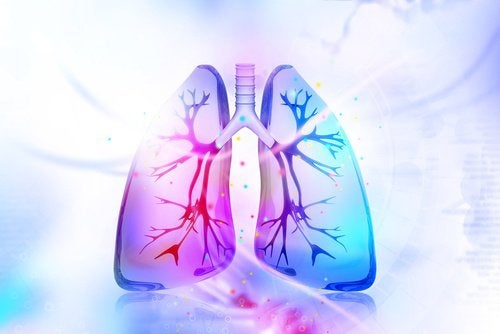how-to-detoxify-your-lungs