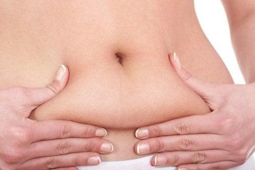 adelgazar-consumiendo-grasas-y-proteinas-500x333