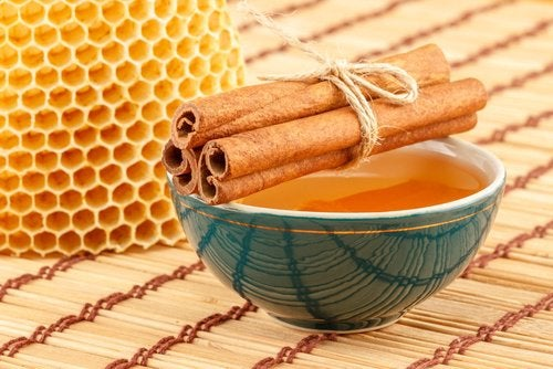 bebida-de-canela-y-miel-de-abejas-500x334