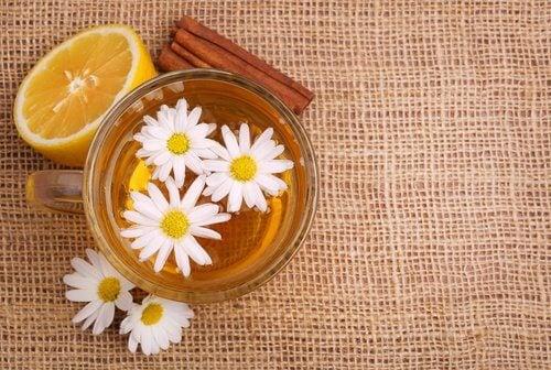 bebida-de-manzanilla-y-canela-500x336