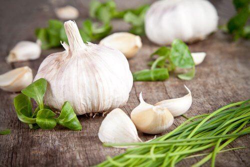 garlic-500x334