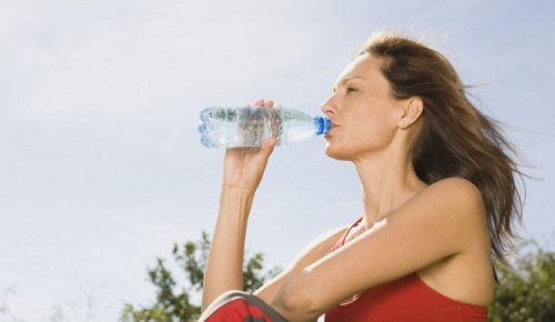 the-importance-of-hydration-620x360-500x290