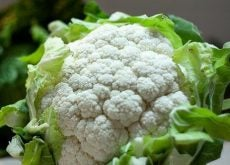 benefits-of-cauliflower-500x332-1