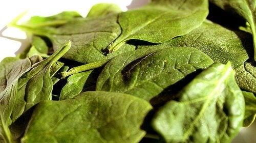 spinach-1