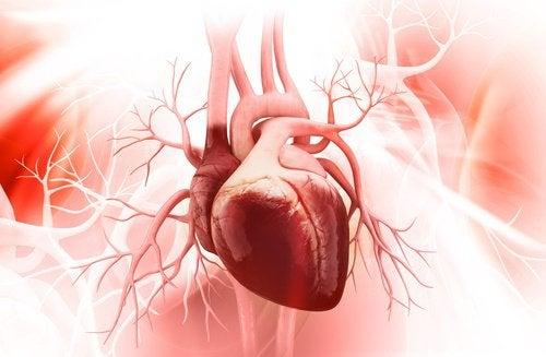 心臓にダメージを与える8つの悪習慣