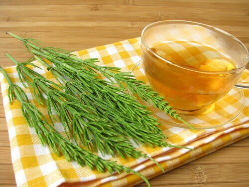 2-horsetail-tea