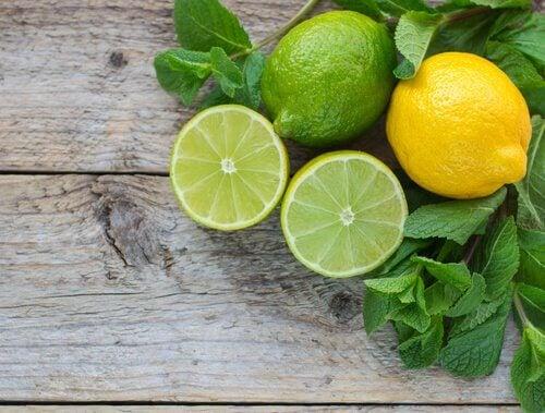 レモンの利用方法