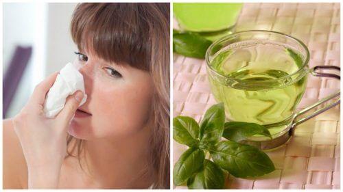 鼻づまりによく効く自然療法TOP5