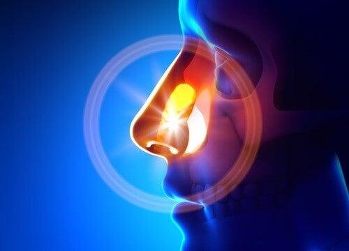 自然のもので副鼻腔炎を治す方法