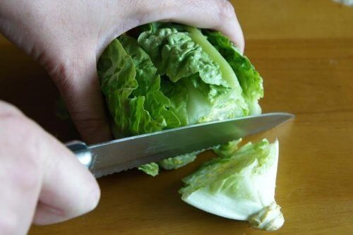 frozen-lettuce-500x333