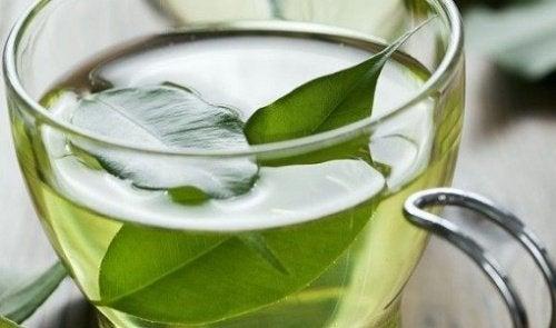 緑茶と皮膚がん