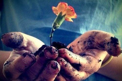 愛情は毎日育むことで開花するもの