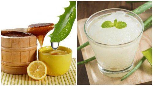 healthy ingredients and aloe juice