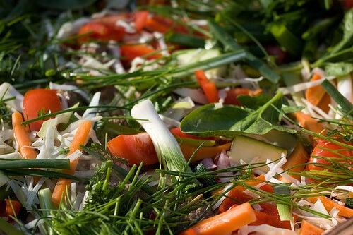 胃食道逆流症の人にオススメの野菜