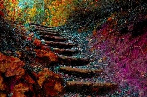 人生の階段:あなたが成長するのに必要な5ステップ