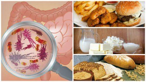 腸の健康を脅かす7つの食べ物