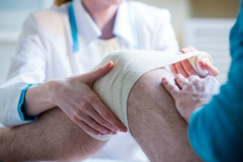 新しい膝の治療法 「生体包帯」 の研究