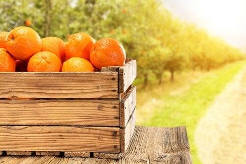 箱に入ったオレンジ