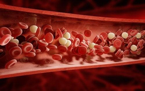 血液を浄化する9つのハーブとスパイス