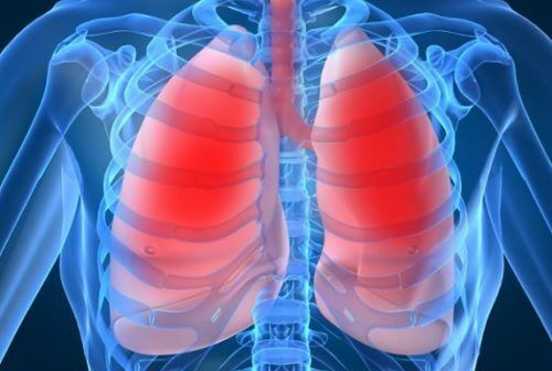 肺機能の低下を表す10の症状と、肺の健康改善方
