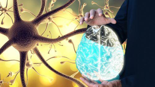 体全体の健康のために迷走神経を呼び覚ます方法