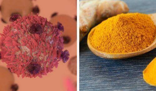 ターメリックの抗がん作用