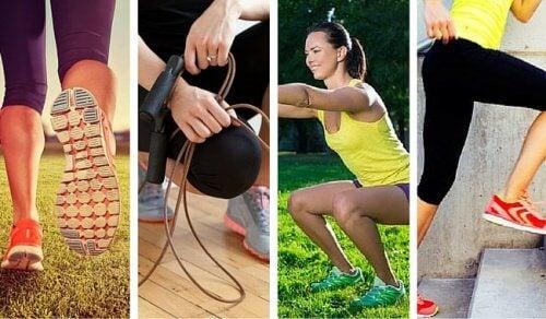 運動をすればするほど/エネルギー消費量は低下することが判明