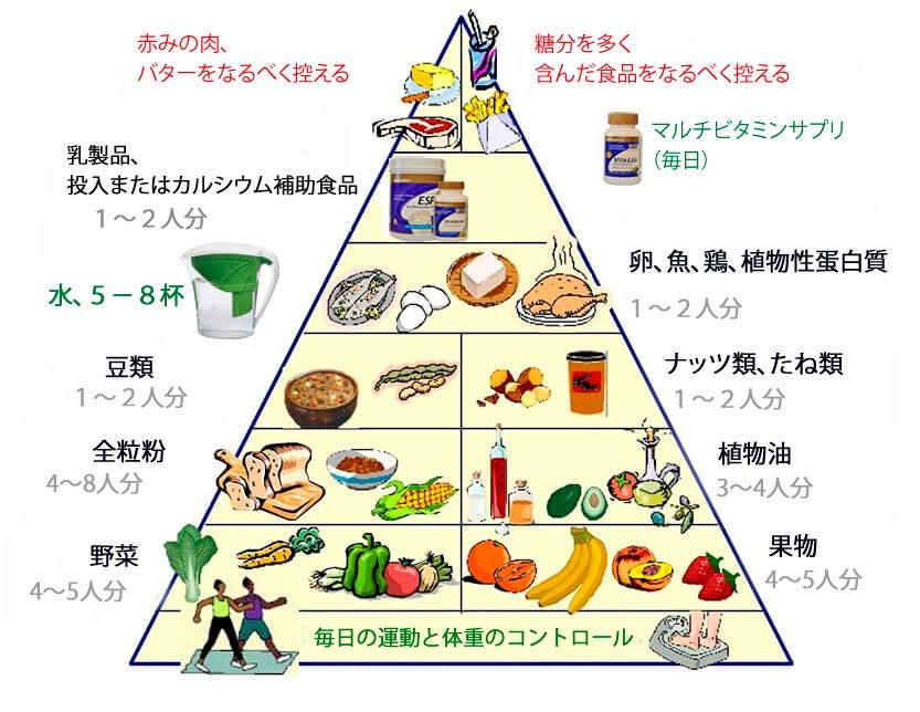 健康的な生活を送る為の新しい食事指針ピラミッド