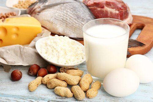 タンパク質が豊富な食べ物