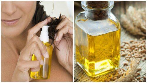 小麦胚芽油が髪に与える6つの効果