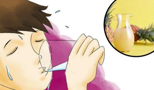 パイナップルの皮を使って腸内フローラを整えよう