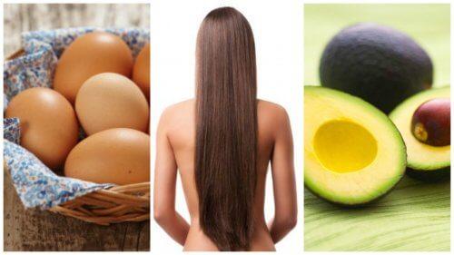 豊かで美しい髪を作り上げる8つの食べ物