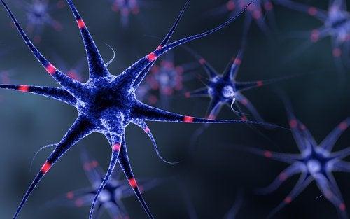 神経系を強くする6つのヒント
