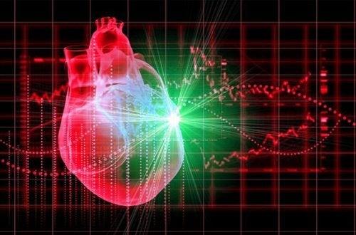 紫キャベツと心臓